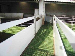 Sistema de suelos para ovino con rejillas de plástico tipo slats verdes.