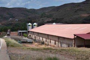 Vista general de explotacion de ganado ovino con la colocacion de dos silos metalicos de pienso para el abastecimiento de las lineas transportadoras.
