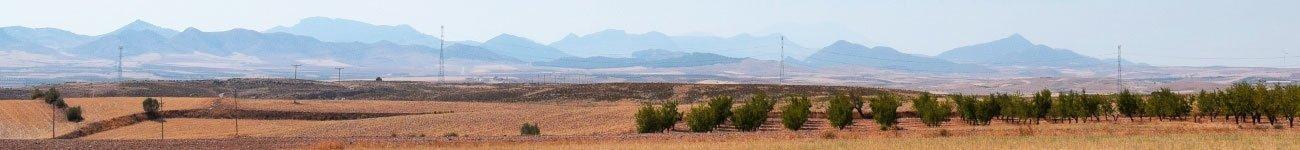 Vista de paisaje árido