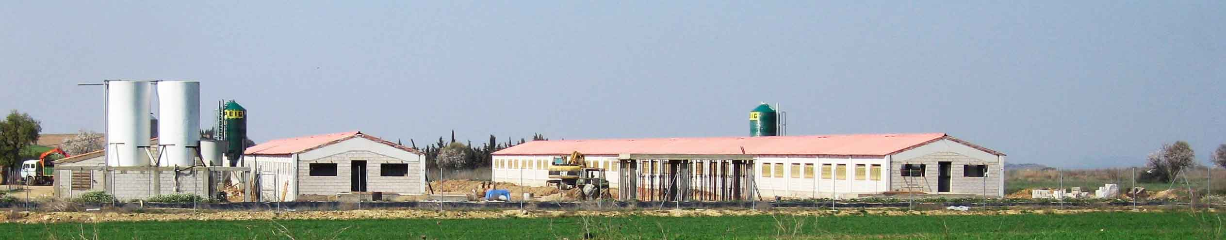 Panorámica de nueva instalación ganadera para cebo porcino