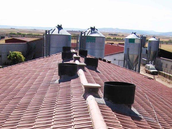 Chimenea ventilación cebadero de cerdos
