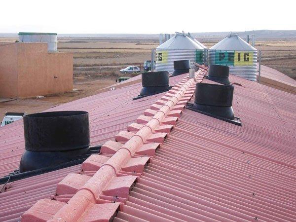 cubierta de cebadero porcino con chimeneas para su ventilacion