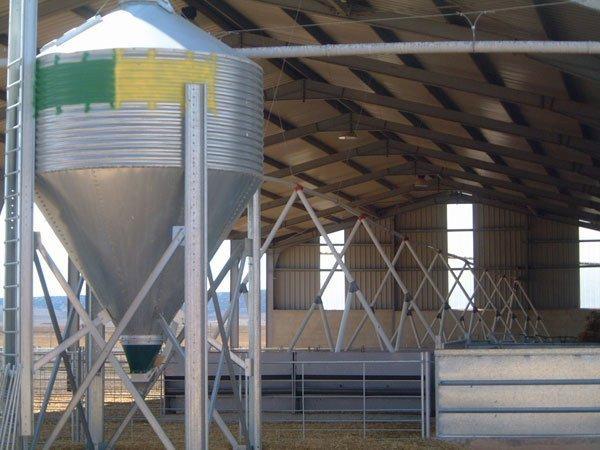 silo de pienso, con reparto de pienso automático en cebadero de ovino
