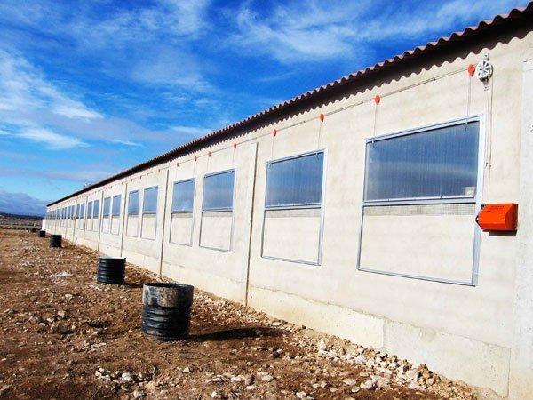 Cebadero porcino lado con ventanas de policarbonato
