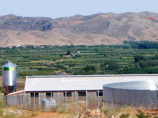 Equipamiento ganadero, silo, depósito de agua en una granja porcina y fondo paisaje verde
