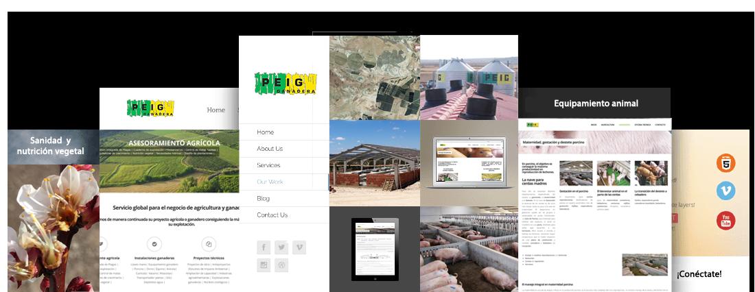 sanidad y nutrición vegetal, asesoramiento agrícola, construcción y material ganadero, equipamiento ganadero,porcino