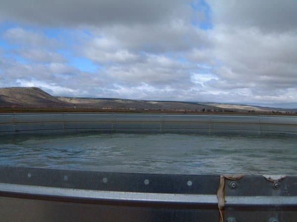 Deposito de agua con base de hormigón y chapa termosellada