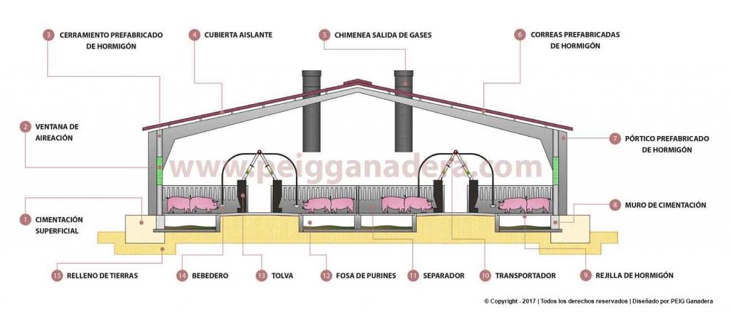 Sección constructiva de nave cebo cerdos construcción de granjas porcinas