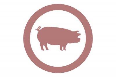 icono porcino