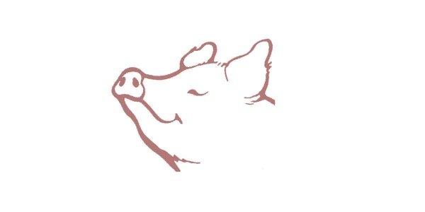 Dibujo cara de cerdo