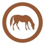 Ganado equino. Experiencia y profesionalidad en el diseño y construcción de proyectos especializados en gestión y construcción explotaciones de equino y naves para caballos y yeguas.