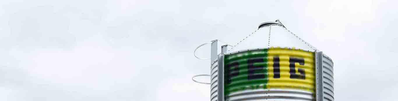 Silo de almacenamiento para grano y harinas mediantes silos metálicos y de fibra de vidrio en granjas de animales