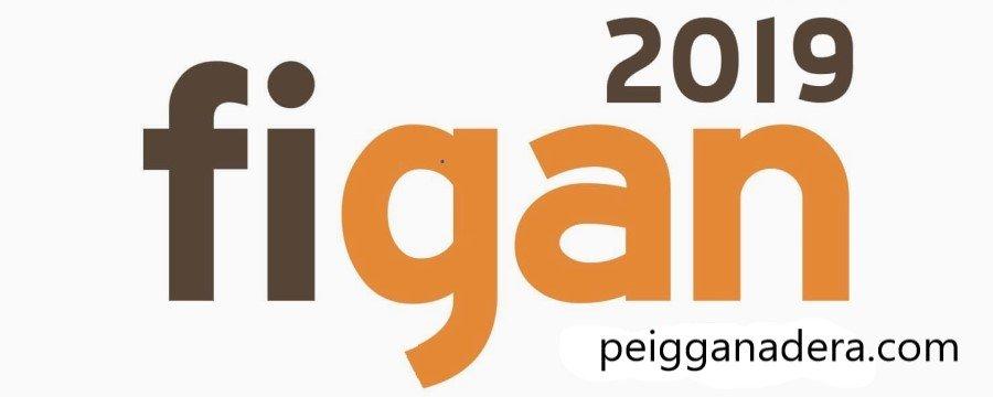 Cartel Figan 2019