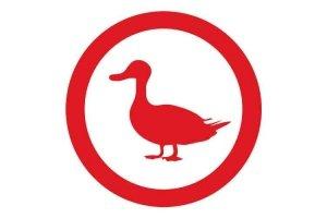 Icono de material de granjas para patos de engorde