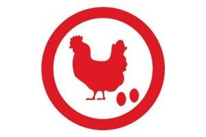 Icono de material para gallinas reproductoras