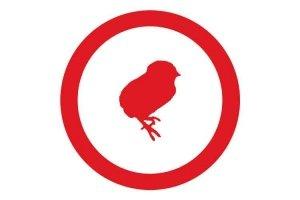 Icono de recría de pollitos