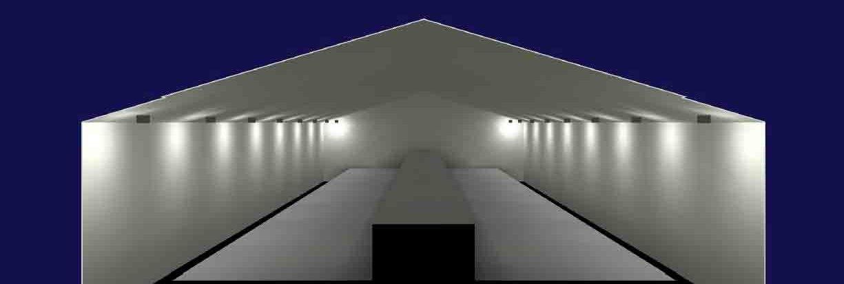 Imagen que simula la colocación de las luces en una granja para aves