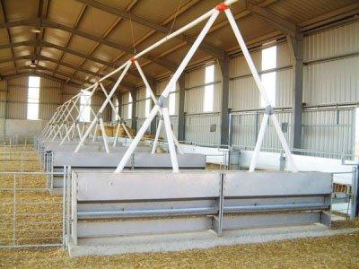 Linea de transportador de pienso con doble caida en tolva de ganado ovino o caprino.