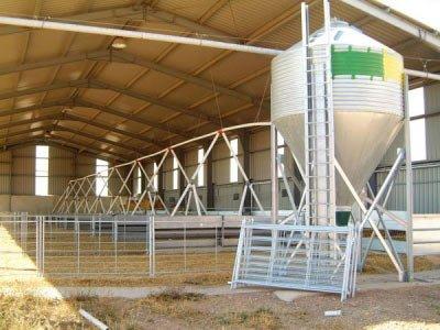Silo pequeño con linea de transportador de pienso en ganado ovino o caprino.