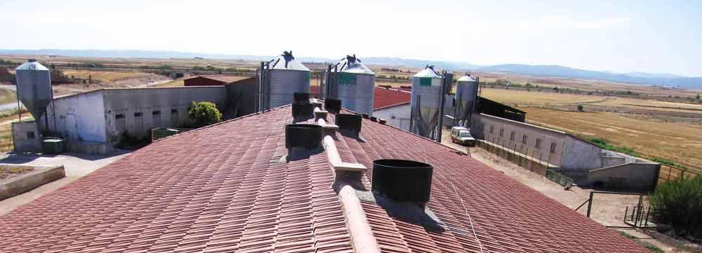 Panoramica en cubierta de cebadero con chimeneas de salida de gases