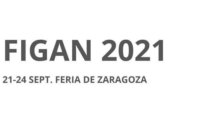 Banner Figan 2021